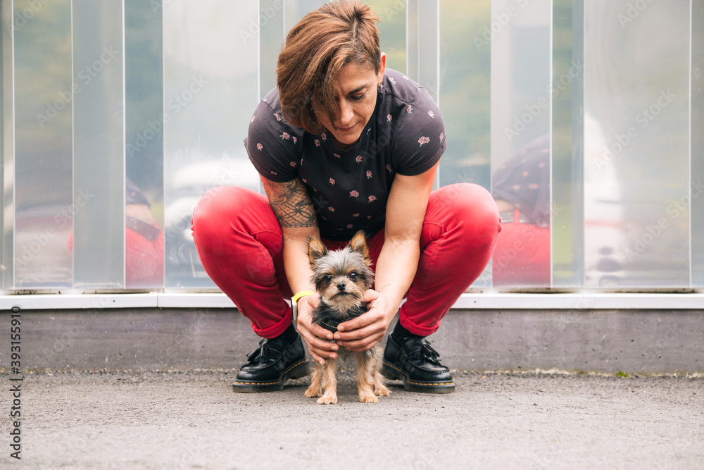 Fototapeta Woman trying to educate her yorkshire terrier dog