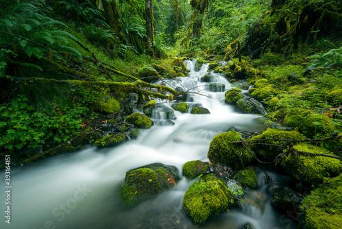 Deer Horn Creek flowing through North Cascades National Park