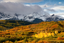 Scenic View Of Mount Sneffels With Autumn Trees In Foreground
