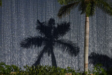 Water Feature With Water Running Down A Large Stone Wall And Palm Tree
