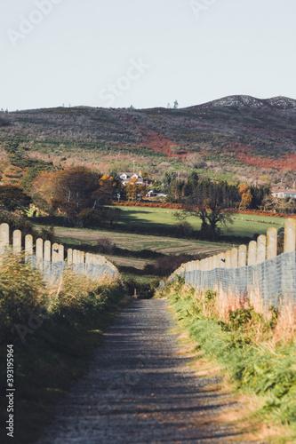 Obraz na plátně View down hiking path towards the hills in Bray/Greystones, Wicklow, Ireland