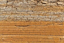 The Surface Of Thin Bedded Layers Of Posidonia Shale From The Lower Jurassic
