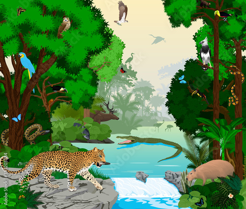 Fototapeta premium Rainforest river with animals vector illustration. Vector Green Tropical Forest jungle with parrots, jaguar, boa, peccary, Capybara, osprey, harpy, monkey, deer, toucan, anaconda and butterflies.