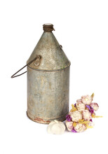 Vertical Shot Of A Rusty Retro Milk Can And Garlic Isolated On A White Background