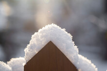 Fence Covered With Snow In The...