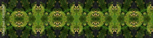 Photo Christmas decoration made from naturalistic looking green spruce branches with needles