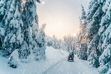 Rider Driving In The Quad Bike Race In Winter In Beautiful Snowy Road With Fir Trees In Frozen Mountains Forest. Winter Holiday, Bokeh, Snowflakes, Lights, Sunset
