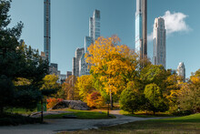 New York City - USA - Oct 31 2020: Beautiful Foliage Colors Of New York Central Park