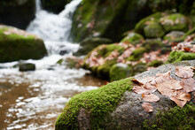 Closeup View From  Beautiful Stone With Moss And Leaves. Nice Cascade From A Little Waterfall In Background.