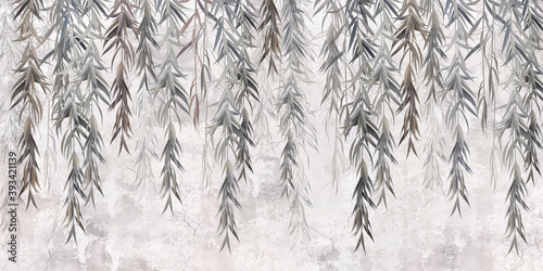 Fototapeta Photo wallpaper, wallpaper, mural design in the loft, classic, modern style. Willow branches on a gray concrete grunge wall.  obraz
