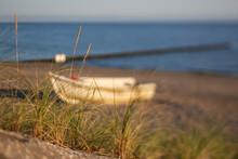 Grass Growing On Sandy Coastal...