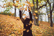 Happy Young Woman Throwing Aut...