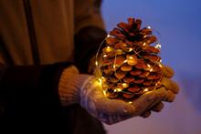 Illuminated Pine Cone Held By ...