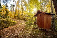 Modern Wooden WC Cabin In A Go...