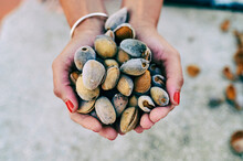 Hands Of Woman Holding Pile Of...
