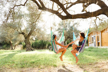 Young Women Holding Hands While Sitting In Hammocks At Yard