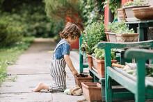 Boy Kneeling While Gardening P...