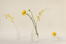 Vases Of Yellow Flowers In The...