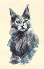 Cat Watercolor Illustration