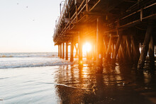 Golden Sunset Light Through Pi...