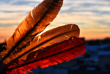 An Image Of Three Colorful Sacred Feathers Against A Sunset Sky.