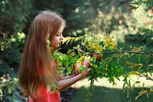 Lovely Cute Girl In The Garden...