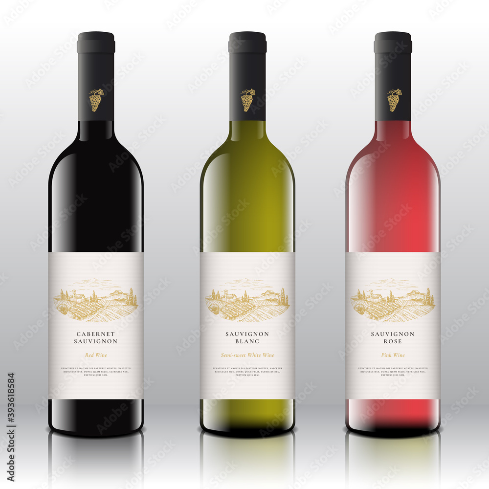 Fototapeta Premium Quality Red, White and Pink Wine Labels Set on the Realistic Vector Bottles. Hand Drawn Grapes Bunch and Rural Vineyard Landscape Sketches with Vintage Typography. Isolated
