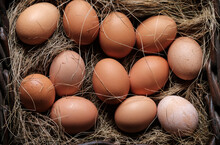Organic Eggs In Wicker Basket ...