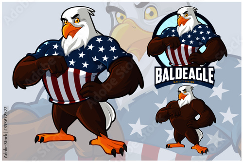 Fotografia Eagle Mascot Design Set