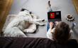 shopping online black Friday dog  sleeping
