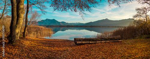 Tela Herbst auf der Herreninsel am Chiemsee