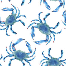 Beautiful Vector Seamless Underwater Pattern With Watercolor Blue Crabs. Stock Illustration.
