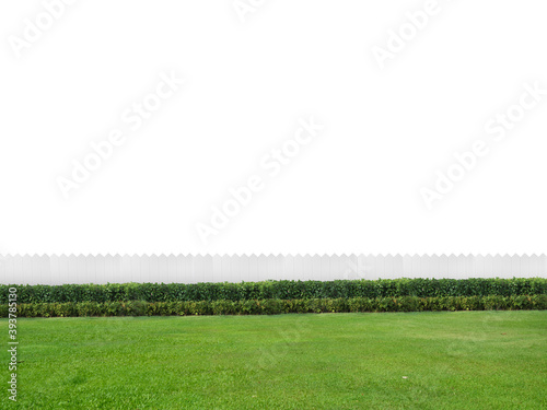 Tablou Canvas Empty backyard isolated on white background with copy space