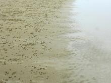 Crab Hole On Sand Beach At Pranburi, Prachuap Khiri Khan, Thailand - Habitat Of Ghost Crab ( Ocypode Ceratophthalmus ) At Low Tide