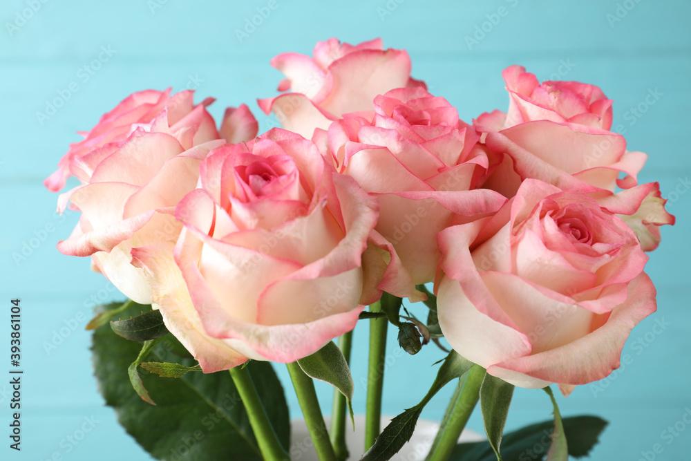 Fototapeta Beautiful pink roses on light blue background, closeup