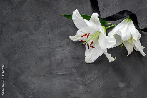Obraz na plátně Lily funeral flower on dark stone