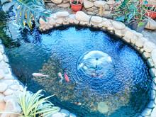 Decorative Lake With Fish Indo...