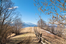 Spring Mountain Landscape, Bare Trees Along The Road With A Wooden Fence,melting Snow, Snowcapped Mountains.