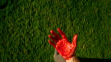 Horrified And Scared Man Look Down On Hand Covered In Blood. Run Away From Murder Scene Or Destroy Evidence From Crime. Criminal Or Self Defence Victim Looks At Blood On Hands