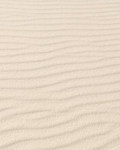 Pattern In Sand At White Sands...