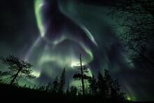 Auroras In The Wilderness, Beh...