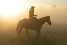 Silhouette Of Cowgirl With Las...