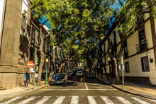 A Typical Street In Funchal, M...