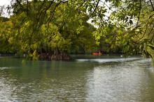 Lago De Camecuaro Con árboles Y Un Bote