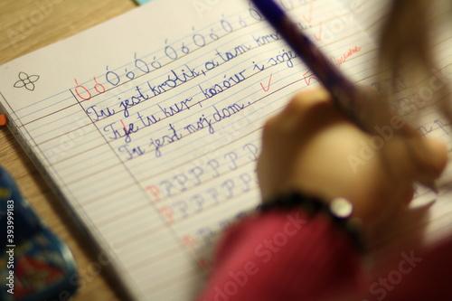 Fototapeta Nauka pisania liter w języku polskim zeszyt w cienkie linie obraz