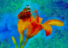 Flower Lily Butterfly Art On Blue Background