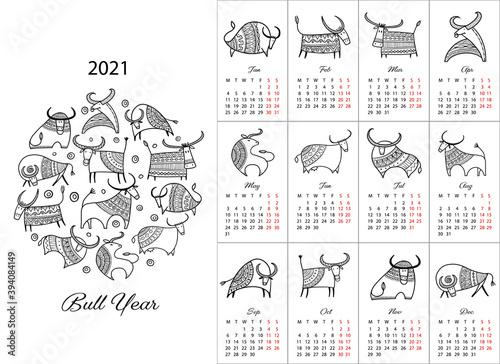 Obraz Happy new year, Calendar 2021. Bull, ox, cow. - fototapety do salonu