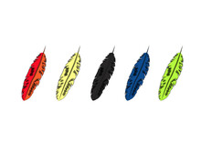 Multicolored Bird Feather Drawing Image
