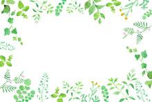 グリーンの草花の囲みフレーム 水彩イラストのトレースベクター。レイアウト変更可能。