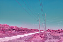 Surreal Pink Power Lines Along...